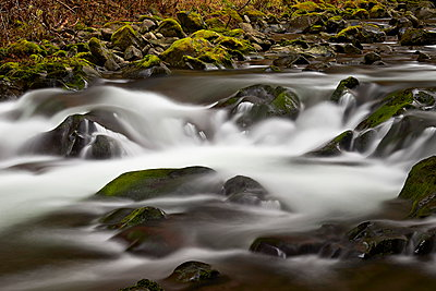 Cascades through moss-covered boulders, Olympic National Park, Washington State, United States of America, North America - p871m929679f by James Hager