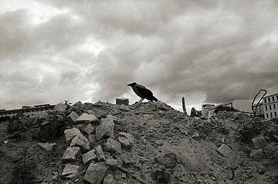Ruins - p1710333 by Rolau
