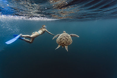 Indonesia, Bali, Underwater view of female diver swimmingalongside lone turtle - p300m2199147 by Konstantin Trubavin