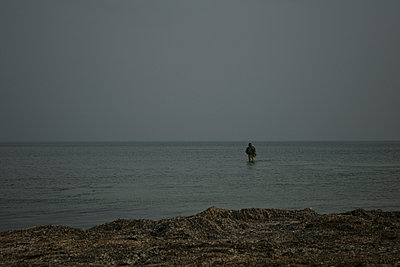 Fisherman fishing in the sea - p600m2100050 by Laura Stevens
