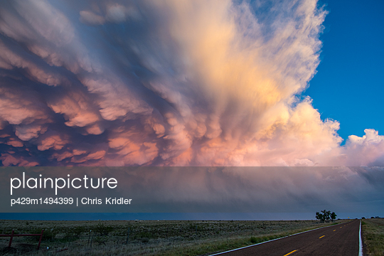p429m1494399 von Chris Kridler