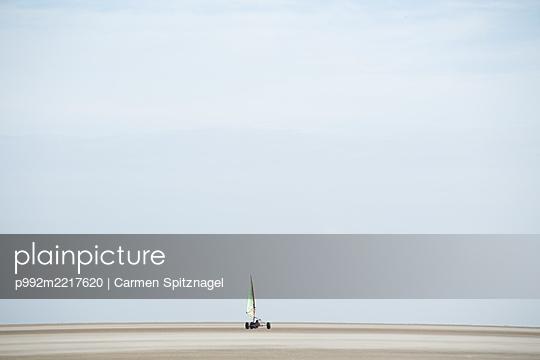 Strandsegler auf Römö - p992m2217620 von Carmen Spitznagel