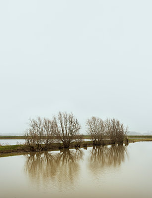 flooded - p1132m1537994 by Mischa Keijser