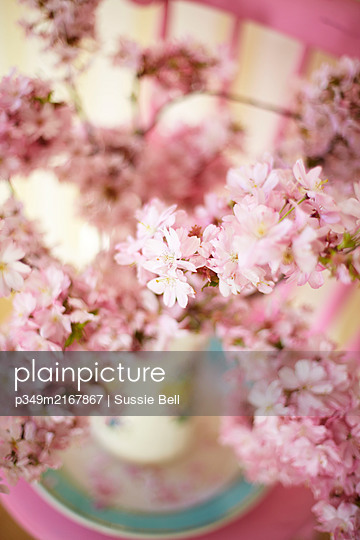 Spring blossom - p349m2167867 by Sussie Bell