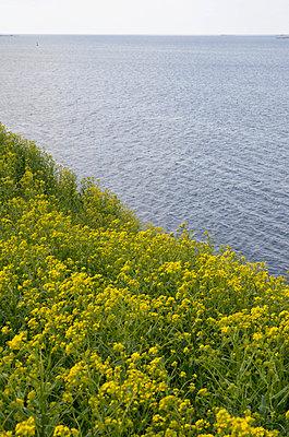 Sea - p322m660422 by Kimmo von Lüders
