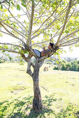 Man using smartphone on tree, Pagudpud, Ilocos Norte, Philippines - p429m2091550 by dotdotred