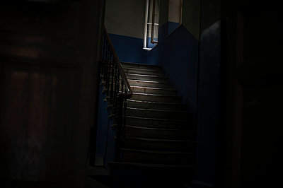 Dark - p1007m959903 by Tilby Vattard