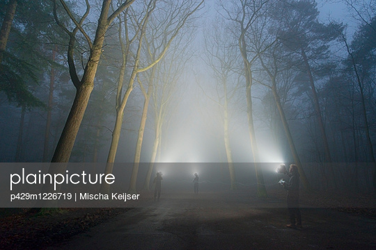 Three people shining lights, Illuminating the woods in heavy fog - p429m1226719 by Mischa Keijser