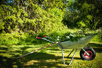 Wheelbarrow in garden - p1418m1571885 by Jan Håkan Dahlström