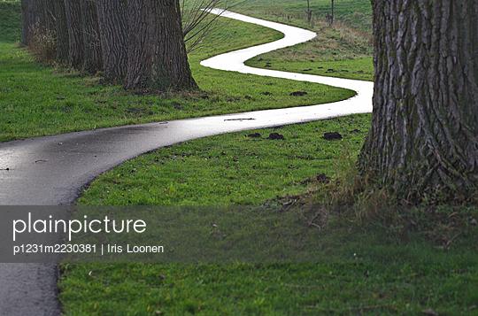 Netherlands, Wet path - p1231m2230381 by Iris Loonen