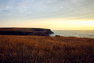 Sunset over Cornwall coast - p879m2044704 by nico