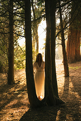 Woman in white dress in the midst of a forest - p586m1007275 by Kniel Synnatzschke