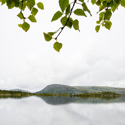 Landscape reflecting in water - p312m1024919f by Mikael Svensson