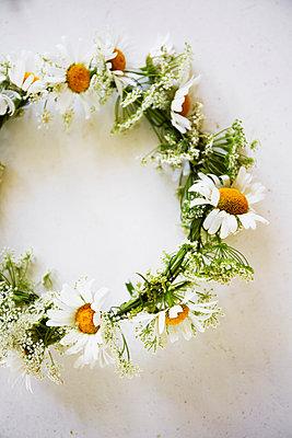 Flower wreath on white background - p312m1113947f by Anna Kern