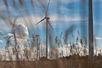 Windkraftanlagen in renaturierter Landschaft - p1079m1042140 von Ulrich Mertens