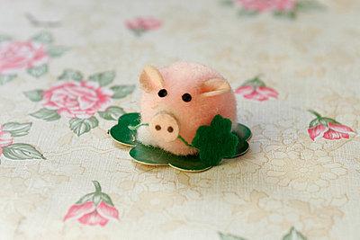 Glückliches Schwein - p1650490 von Andrea Schoenrock