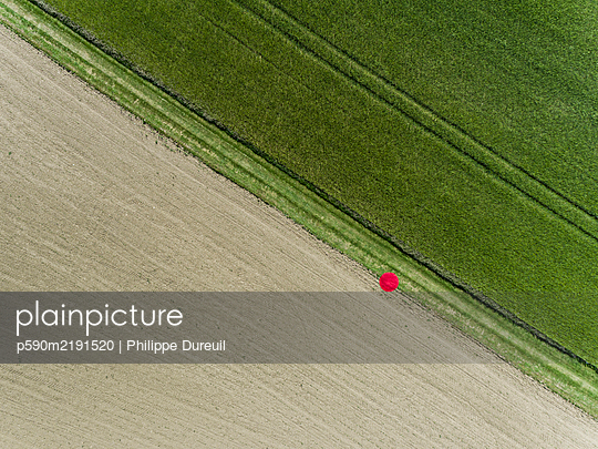 2 meter red dot between two Fields View from above - p590m2191520 von Philippe Dureuil