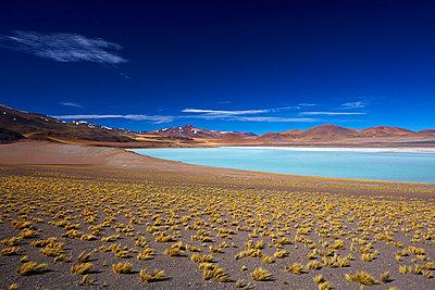 Laguna Tuyajto - p719m883222 von Rudi Sebastian