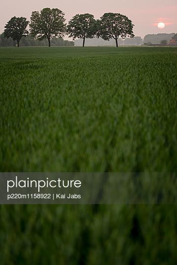 Landschaft am Niederrhein - p220m1158922 von Kai Jabs