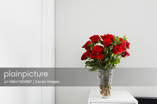 p1166m1524587 von Cavan Images