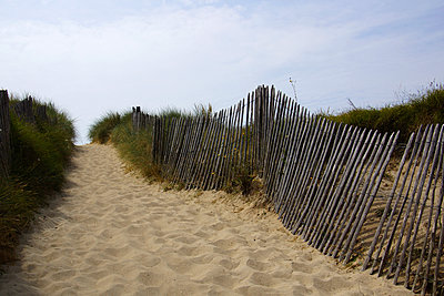 Dunes - p162m925795 by Beate Bussenius