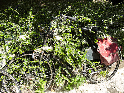 Bicycle - p1499m2013706 by Marion Barat