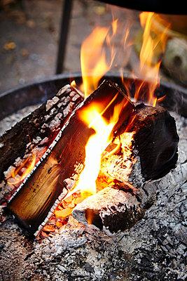 Open Fire - p1026m857193f by Dario Secen