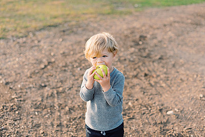 Little boy happily munching on his self picked apple. - p1166m2151892 by Cavan Images