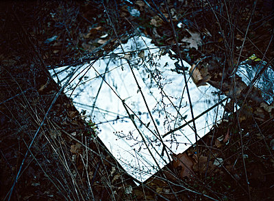 Mirror - p1415m2076784 by Sophie Barbasch