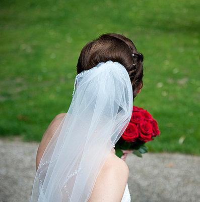 Bridal veil - p1095m880958 by nika