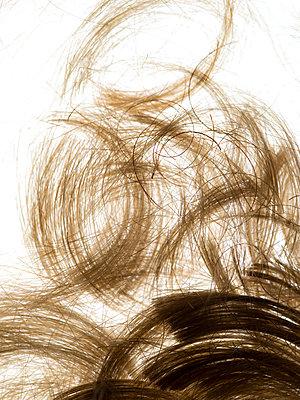 Hair - p401m1182084 by Frank Baquet