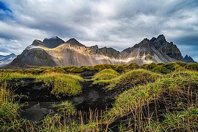 Stokknes, a Vestrahorn, Southeast Iceland; Iceland - p442m2091749 by Robert Postma