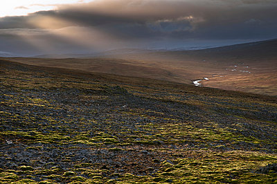 Westfjord im Nordwesten von Island - p979m909931 von Jain photography