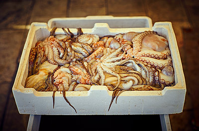 Fresh octopus in box at fish market - p300m1189406 by Dirk Kittelberger