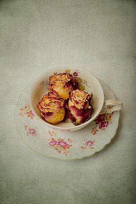 Drei vertrocknete Rosen in einer Kaffeetasse - p451m1559084 von Anja Weber-Decker
