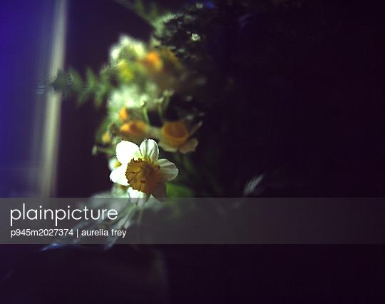 Künstliche Blumen - p945m2027374 von aurelia frey