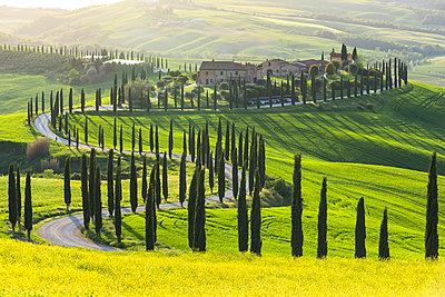 Farmhouse Baccoleno,Asciano,Siena province,Tuscany,Italy. - p651m2032446 by Michael Nebuloni