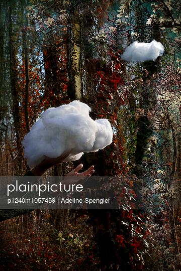 Ivy - p1240m1057459 by Adeline Spengler