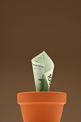 Geldschein im Blumentopf - p2200747 von Kai Jabs