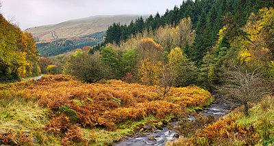 The River Caerfanell at Blaen-y-glyn, Brecon Beacons National Park, Powys, Wales, United Kingdom, Europe - p8713113 by Adam Burton