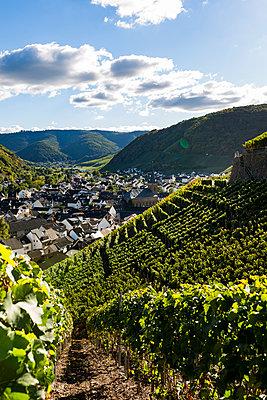 Im Weingebiet - p1271m1539701 von Maurice Kohl