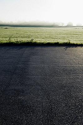 Gras am Straßenrand - p248m953045 von BY