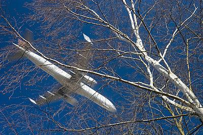 Landeanflug - p4170186 von Pat Meise