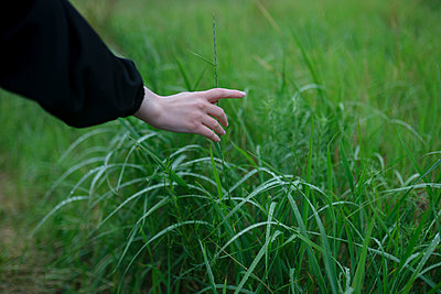 Woman touching blades of grass - p1646m2290897 by Slava Chistyakov