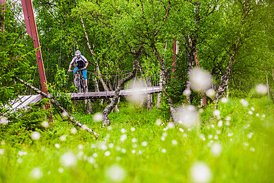 Mountain biker rides across a suspension bridge in Valadalen, Sweden. - p343m1090335 by Elias Kunosson