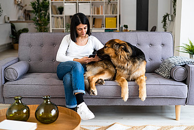 Young woman using mobile phone while sitting with pet dog on sofa in living room - p300m2265277 by Giorgio Fochesato