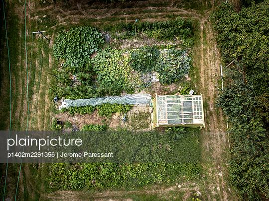 Vegetable garden - p1402m2291356 by Jerome Paressant