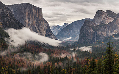 Elevated view of valley forest mist, Yosemite National Park, California, USA - p429m1447857 by Manuel Sulzer