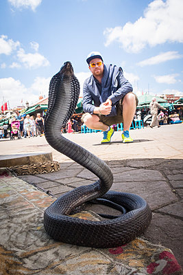 Snake in Marrakesh - p930m1574247 by Ignatio Bravo