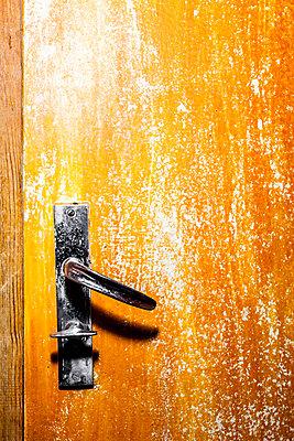 Toilet door - p248m1135070 by BY